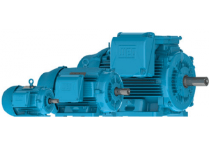 General Purpose & Severe Duty Motors